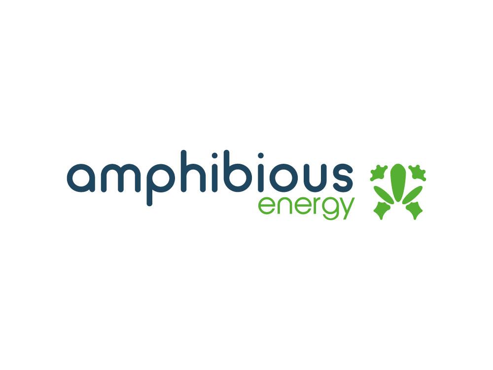 Logo ontwerp Amphibious Energy